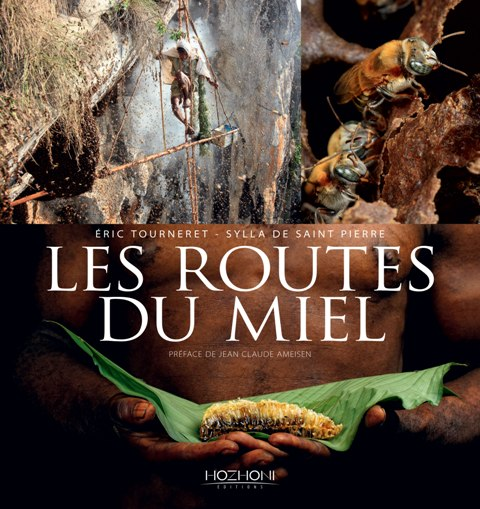 Couv-Routes-du-mieljpg